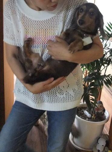 Photos: おばあちゃんに抱かれる紬