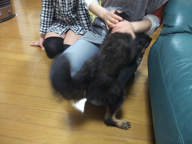Photos: 甘える、甘える