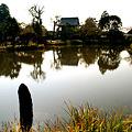 Photos: 称名寺の晩秋風景!(111123)