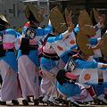 Photos: 阿波踊り、キメポーズ