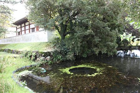 曽根城 - 03