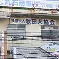 Photos: [笑]  秋田犬協会