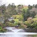 Photos: 100414井の頭公園