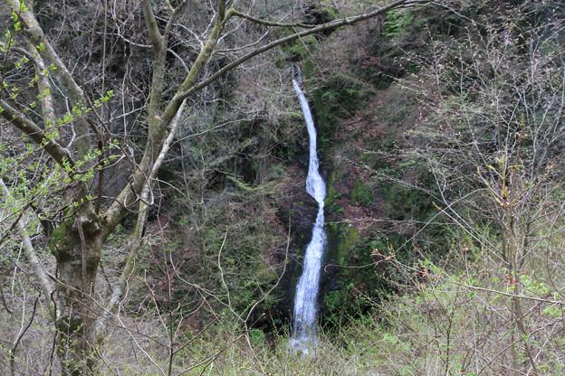 写真: 100430-18御前山・栃寄大滝2
