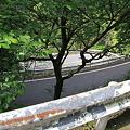 写真: 100513-22高千穂峡の道