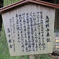写真: 100513-30高千穂神社の夫婦杉