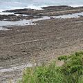写真: 100513-47鬼の洗濯岩5