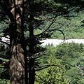 100722-83樹間からの梓川