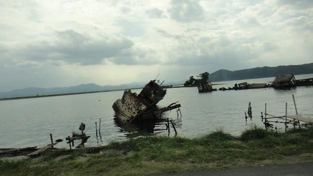大根島DSC00785