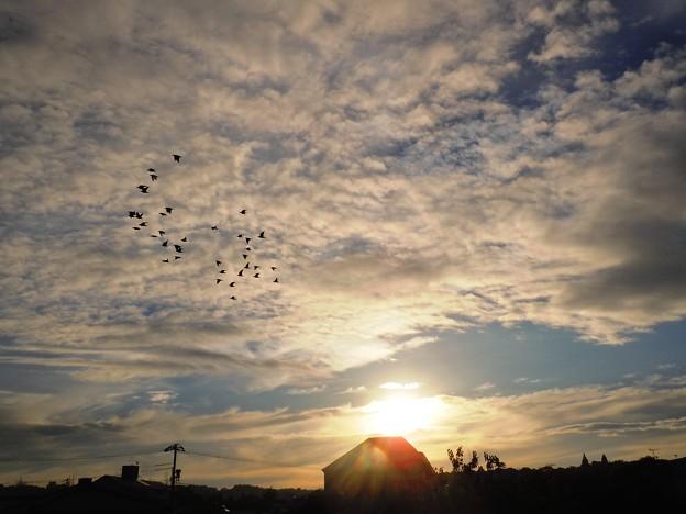 朝の旋回~朝日と共に~