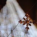 Photos: Ornament