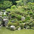 Photos: 智積院 庭園