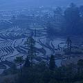 Photos: 夜明けを待つ棚田の村