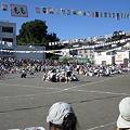 Photos: 幼稚園の運動会