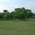 写真: モーモーファーム竹原牧場(3)