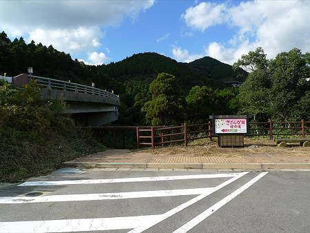 道の駅吉野ヶ里~干石山のサザンカ(1)