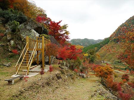 深耶馬渓~楓乃木からの眺め(5)