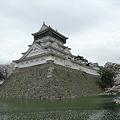 小倉城・勝山公園の桜(1)