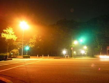 霧の交差点はいいですね