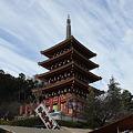 Photos: 五重塔お正月バージョン