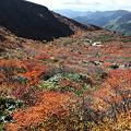 IMG_8893那須 茶臼岳 姥ヶ平の紅葉2
