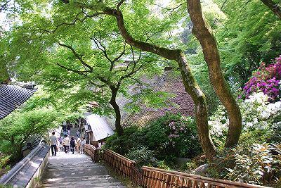 写真: 坂道