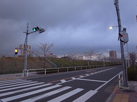 南千住の桜 2010-4-3 10