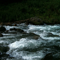 写真: 川の写真2