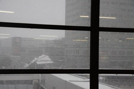 盛岡 大雪
