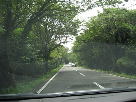 伊豆半島横断中
