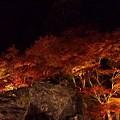 Photos: 石山寺の紅葉ライトアップ。帰ってデジイチで撮ったもうちょっとまと...